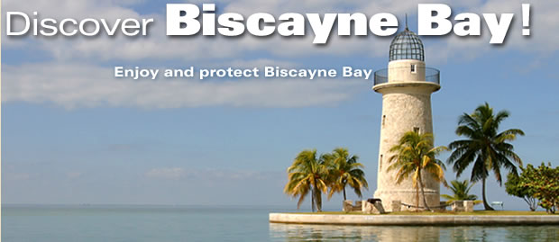 Discover Biscayne Bay!
